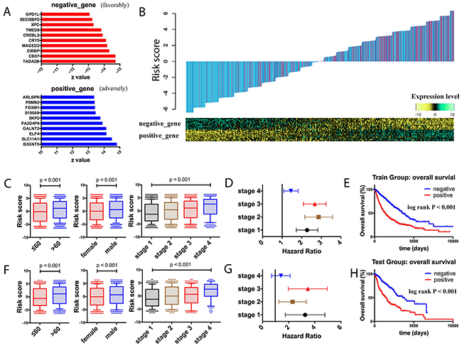 Prognostic landscape of gene expression in the whole cancer population.