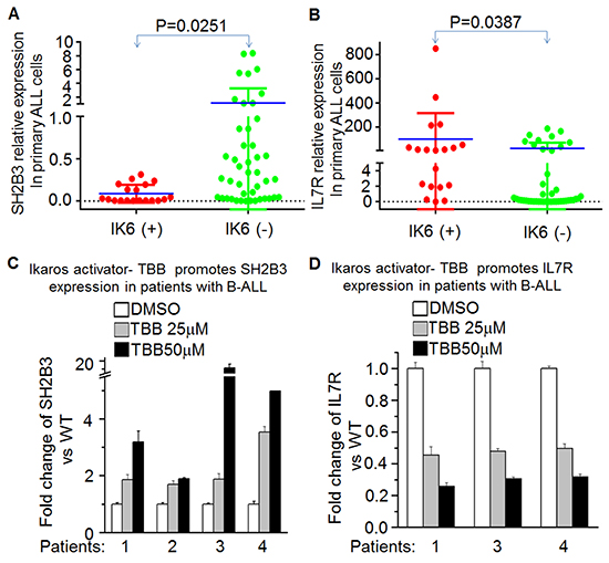 Ikaros deletion results in changes of SH2B3 and IL7R expression in primary B-ALL cells.