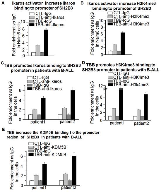 Ikaros promotes SH2B3 expression via chromatin remodeling.