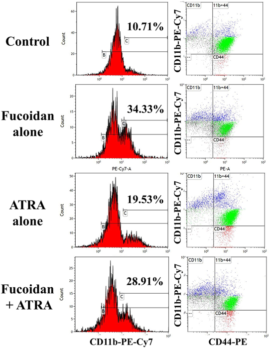 Representative flow cytometry analysis of differentiation in NB4 cells derived from mice tumor mass.