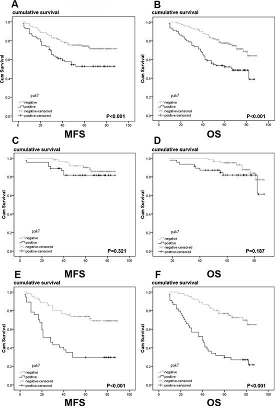 A Kaplan-Meier analysis with a log rank test of metastasis-free survival and overall survival in patients according to levels of PAK7 as determined by immunohistochemical staining.