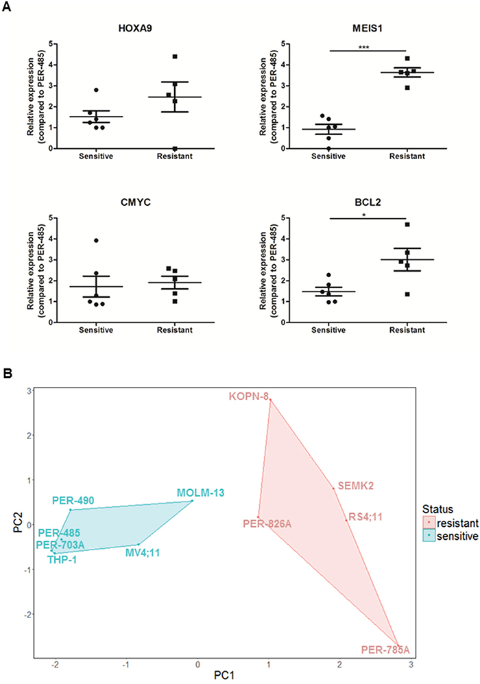 CCI-007 sensitive MLL-r leukemia cells have lower baseline MEIS1 and BCL2 expression levels than resistant MLL-r leukemia cells.