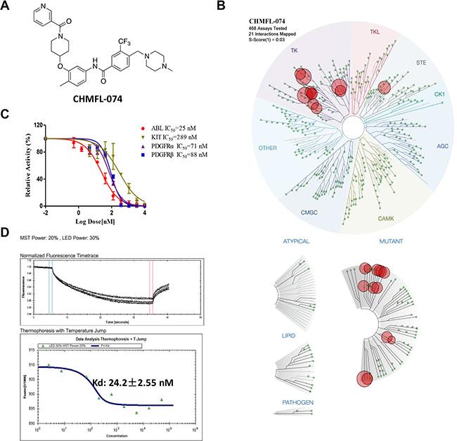 Characterization of CHMFL-074's biochemical activity and selectivity.