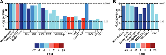 Expression of sAC mRNA is diminished in human cancers.