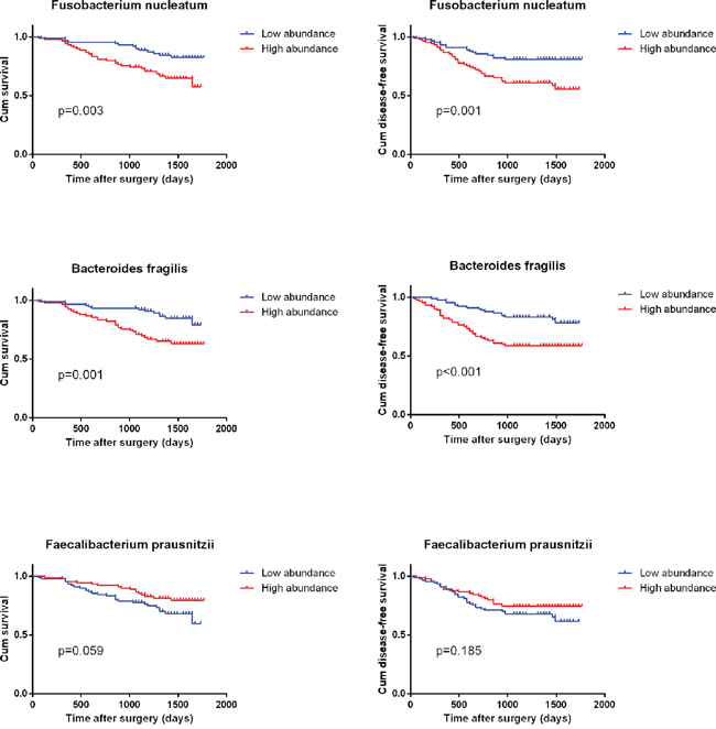 Kaplan–Meier survival curves for overall survival (OS) and disease free survival (DFS) in 180 CRC patients in relation to B. fragilis, F. prausnitzii and F. nucleatum level.