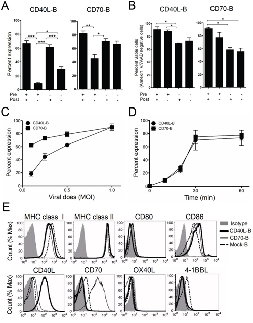 Expression of costimulatory molecules on ex vivo-activated B-cells.