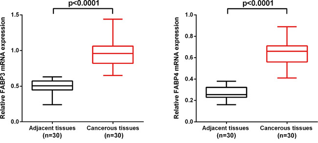 FABP3 and FABP4 mRNA level was significantly higher in NSCLC cancerous tissues than in matched adjacent non-cancerous tissues.