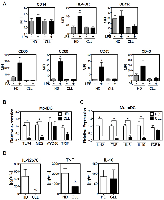 Mo-DCs derived from CLL patients display impaired maturation.
