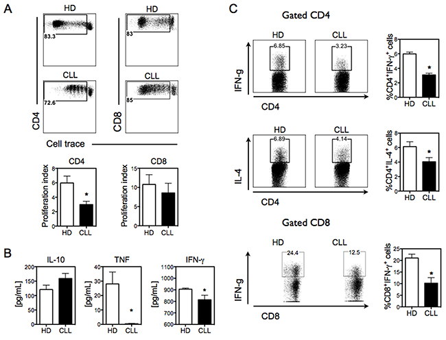 CLL Mo-DCs shows deficient induction of pro-inflammatory allogeneic T-cell response.