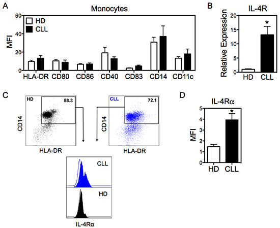 Monocytes from CLL patients exhibit high expression of IL-4Rα.
