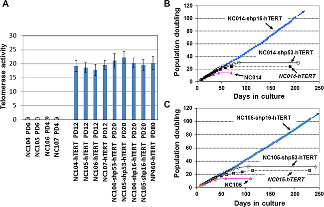 Telomerase and growth curves of cervical epithelial cells after introduction of different genetic factors.