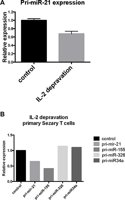 Effect of IL-2 starvation on primary- and mature miR-21 expression in cytokine-dependent T cells (SeAx) and primary Sézary T cells.