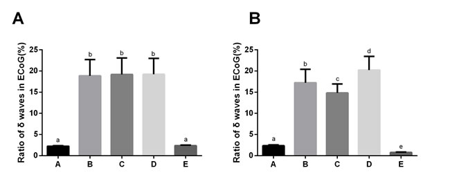The proportion of δ waves in electrocorticogram (ECoG) of rats in the five groups before and after drug administration.