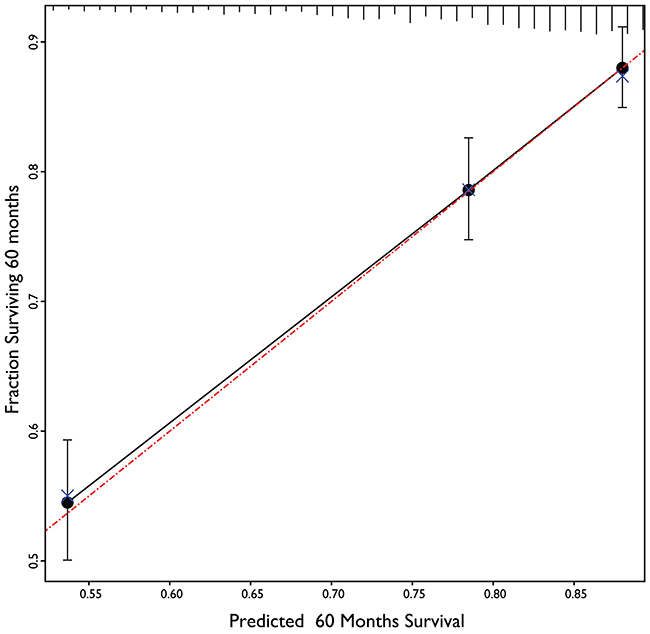 Calibration plot of 5 years overall survival prediction model.