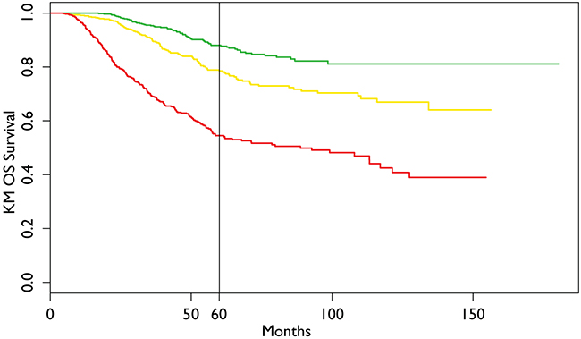 Kaplan Meier Overall Survival of the dataset with three prognostic groups.
