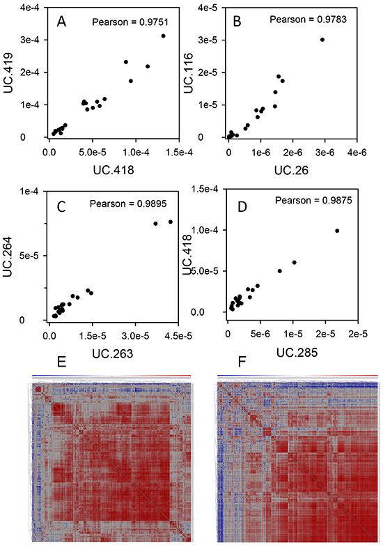 T-UCR have similar pattern of expression in both human and mouse tissues.