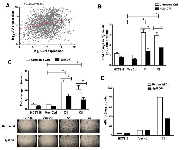 DPI inhibits gelsolin-induced O