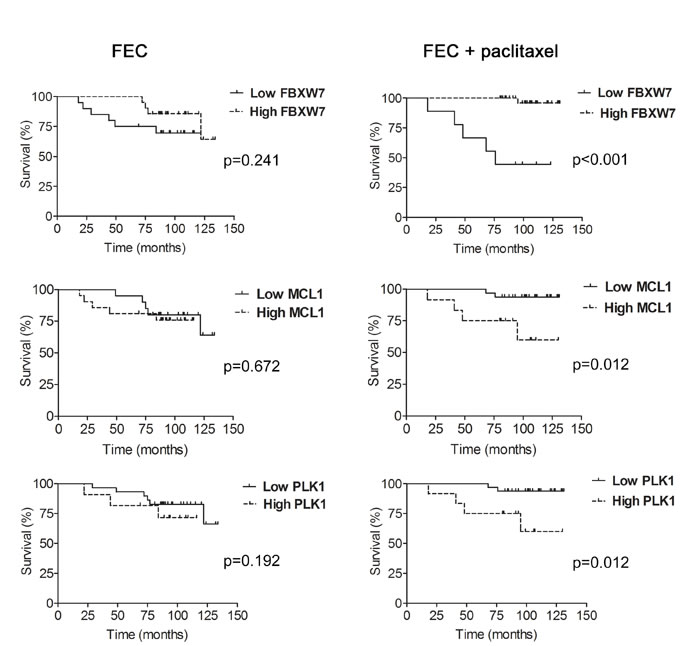 Expression levels of FBXW7, MCL1 and PLK1 and association with disease-free survival (DFS) in paclitaxel-treated patients.