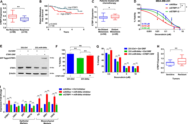 CTBP1 expression correlates with response to chemotherapy, and its loss sensitizes to chemotherapy and enhances epithelial-like state.