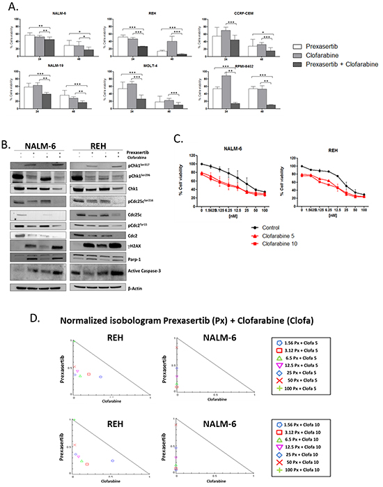 Effect of prexasertib in combination with clofarabine in Philadelphia-negative cell lines.