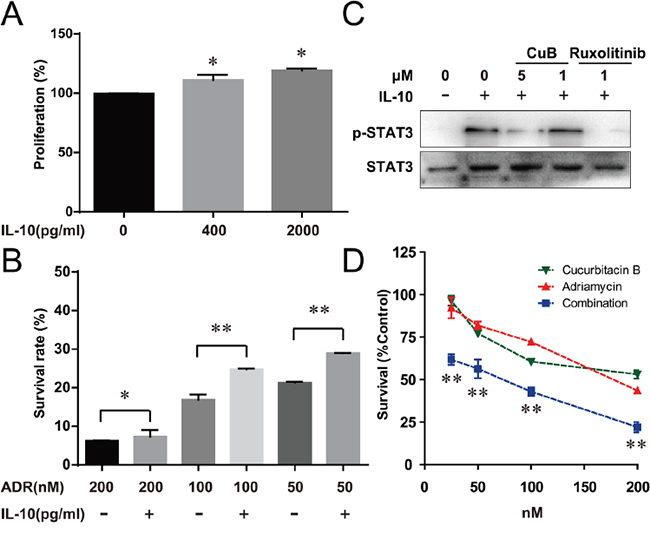 CuB Inhibition of the IL-10/STAT3 pathway significantly increased the cell sensitivity to Adriamycin.