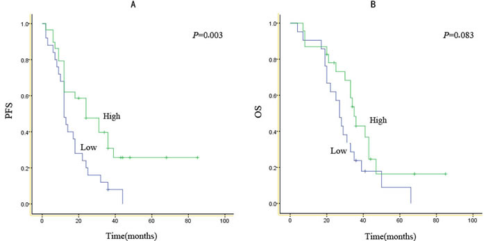 Kaplan-Meier survival curves according to expression score for EGFR mutants.PFS (A) and OS (B) for patients with high or low expression scores for either type of EGFR mutant.