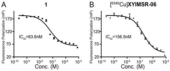 [63/65Cu]XYIMSR-06 demonstrates high binding affinity to CAIX.