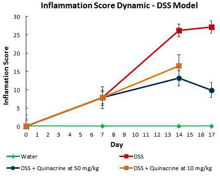 Dynamic of inflammatory score in DSS model of colitis.