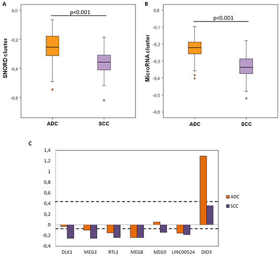 Methylation levels of the DLK1-DIO3 cluster components according to the histological subtype of lung cancer.