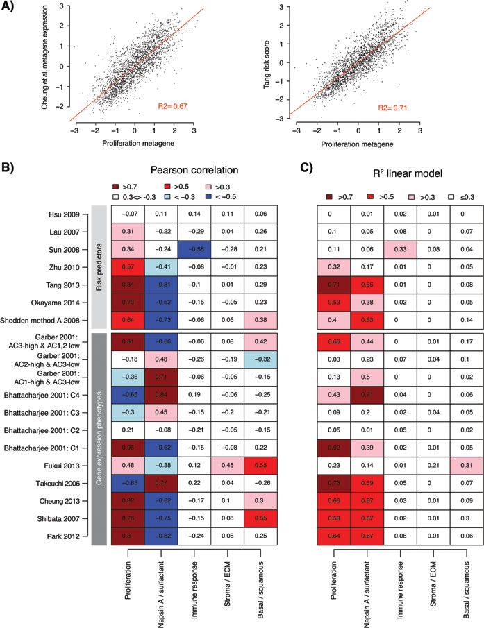 Association of gene expression phenotypes and risk predictor scores with transcriptional metagenes representing different biological processes.