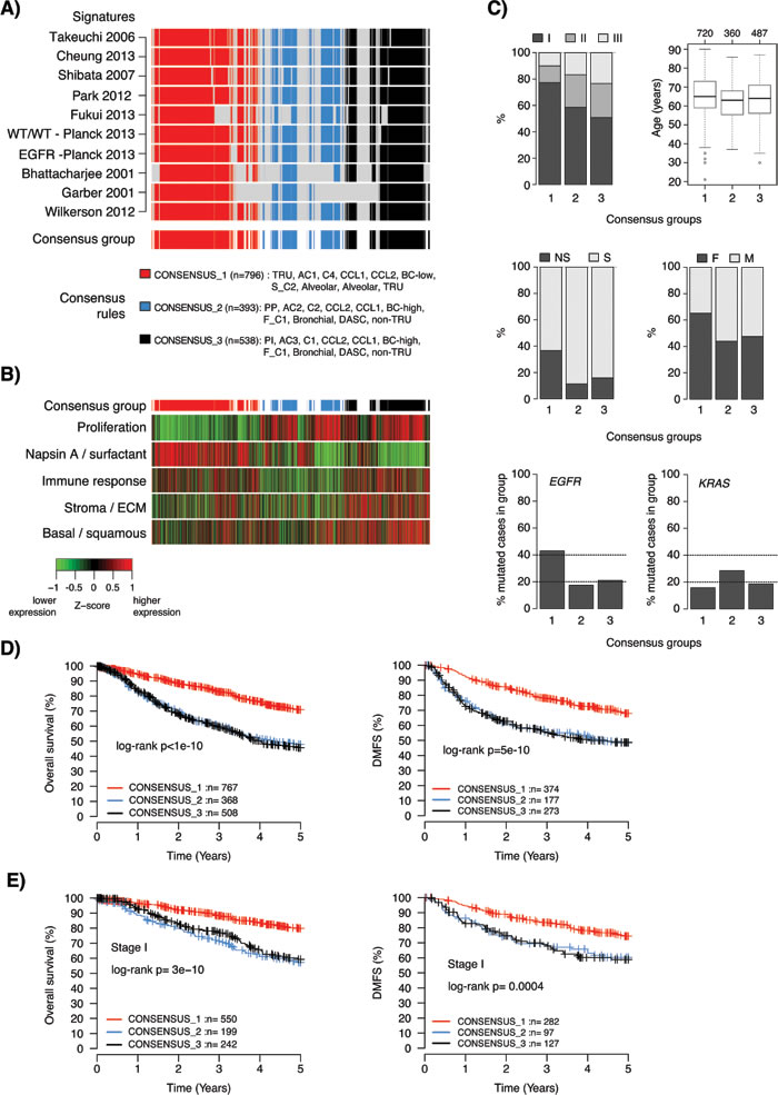 Characteristics of consensus samples across lung adenocarcinoma gene expression phenotypes.