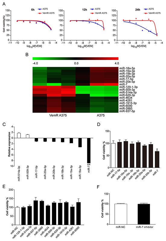 miR-7 is down-regulated in VemR A375 melanoma cells and reestablishment of miR-7 expression sensitizes VemR A375 melanoma cells to vemurafenib.