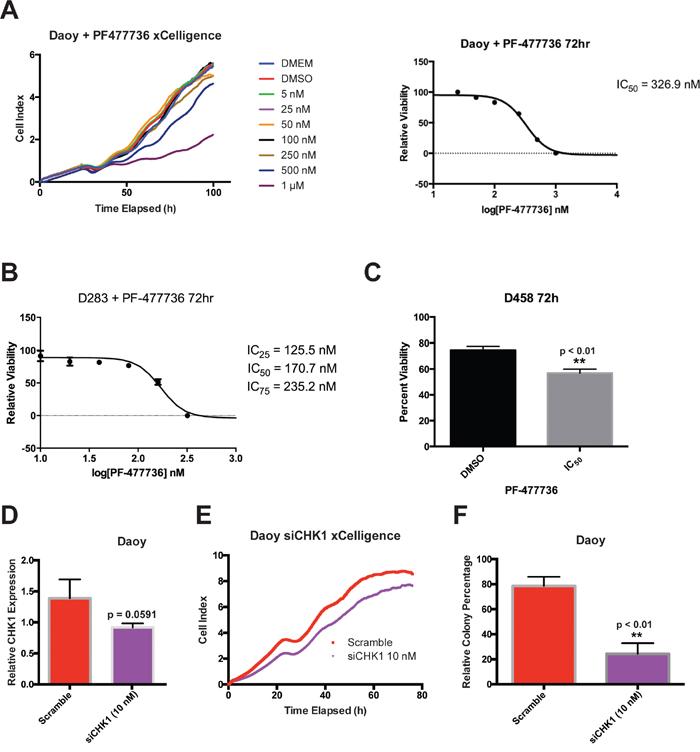 CHK1 inhibition via small-molecular inhibitor PF477736 and siCHK1 knockdown reduce cellular viability in medulloblastoma cells.