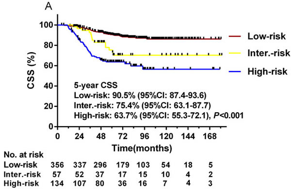 Kaplan-Meier curves depicting CSS in the three RPA-stratified risk groups (A) and in patients treated with different adjuvant treatments in the low-risk group (B), intermediate-risk group (C), and high-risk group (D).