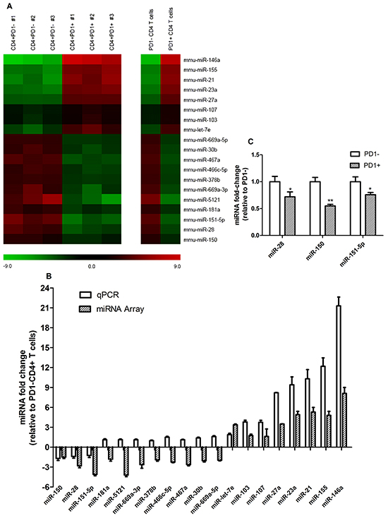 Global miRNA level profile between CD4+PD1- and CD4+PD1+ T cells isolated from tumor-bearing mice.