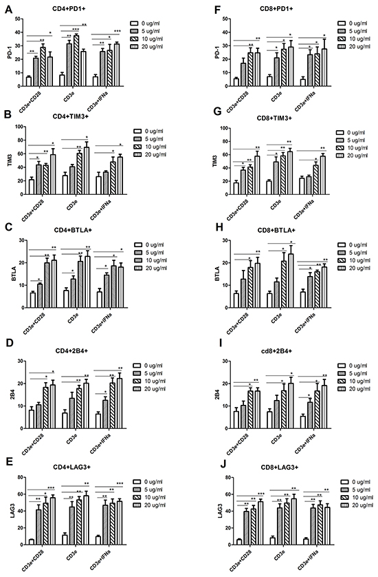 Increased expression of inhibitory receptors in the in vitro-generated exhaustive T cell.