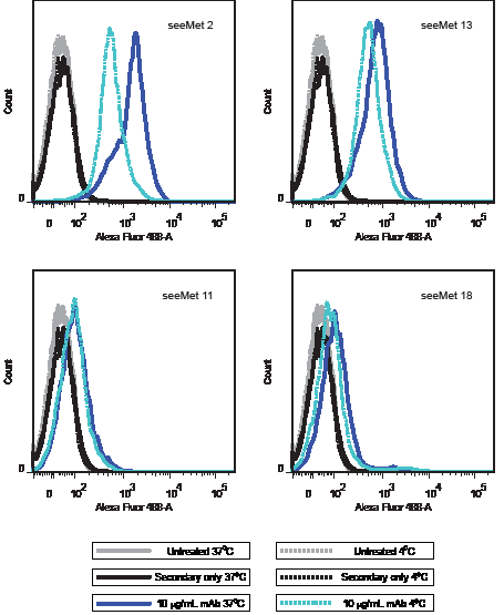 Flow cytometry analysis of seeMet monoclonal antibody binding to live SNU-5 cells at different temperatures.