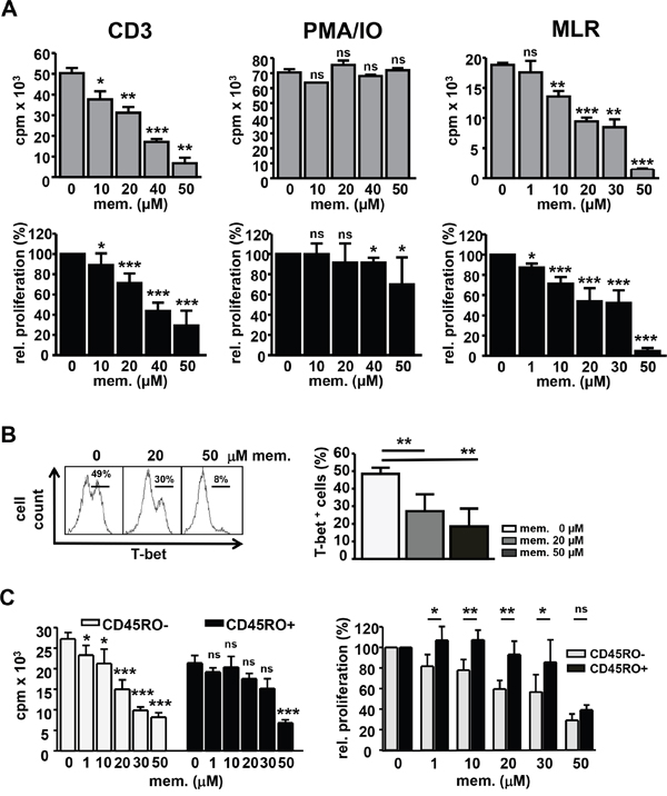 Memantine abrogates T-bet expression and proliferation of human T cells.