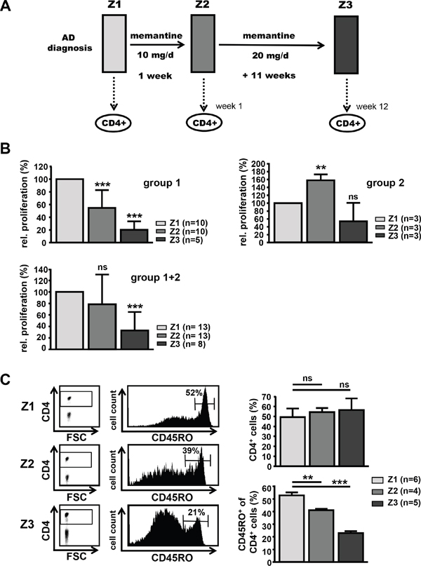 Treatment of AD patients with memantine depletes CD45RO+ CD4+ T cells and suppresses T cell responsiveness.