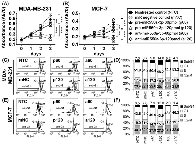 The effects of miR-550a-3p on cell viability and apoptosis were evaluated in MDA-MB-231 and MCF-7 cells.