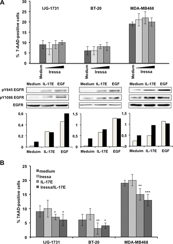 IL-17E phosphorylates the EGFR in Iressa-resistant TNBC cell lines.