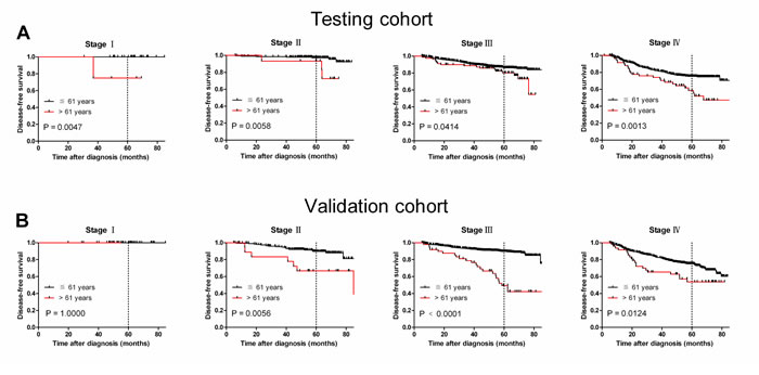 Older age was associated with shorter NPC disease-free survival in subsets of different cancer stages (log-rank test).