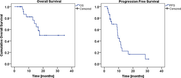 Overall Survival (left panel), and Progression Free Survival (right panel) KM curves.