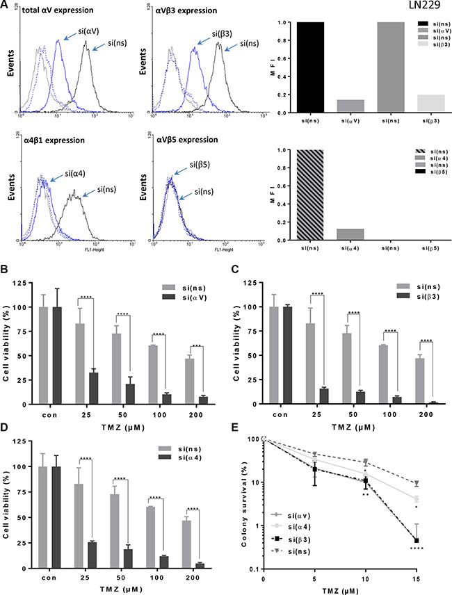 Integrin expression and sensitization to TMZ after specific integrin silencing.