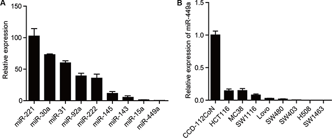miR-449a expression is lower in CRC compared to other miRNAs.