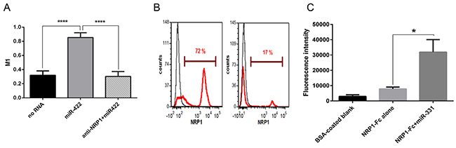 NRP1 colocalization with miRNA conjugated to the beads, unassisted NRP1 knockdown, and binding control.