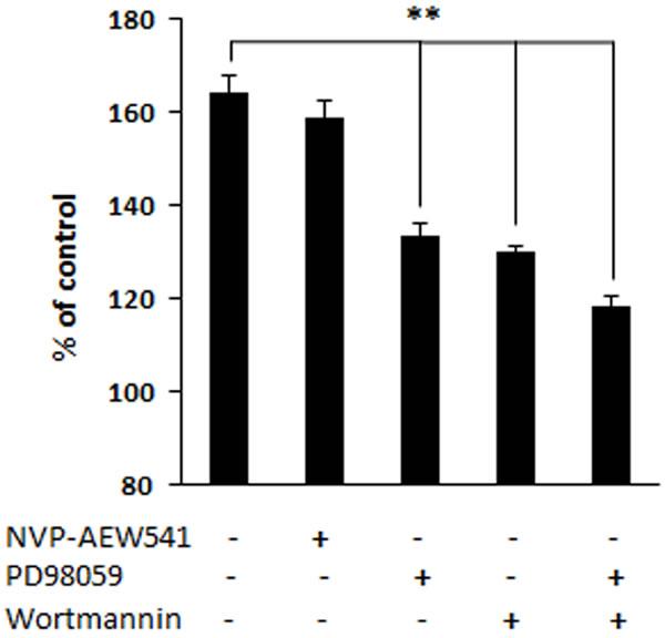 Proliferation of fibroblast in presence of inhibitors.