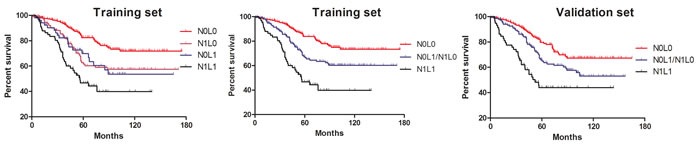 Kaplan-Meier survival analysis in terms of combination of LVI and LNs.