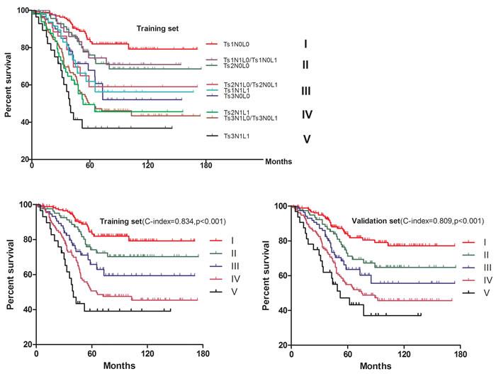 Kaplan-Meier survival analysis of the TsNL staging system.