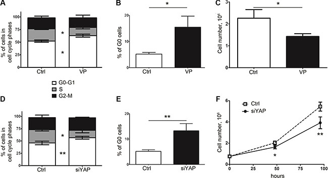 Inhibition of YAP expression or activity in 5F31 is associated with cellular quiescence.